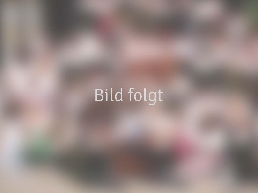 BILD-FOLGT